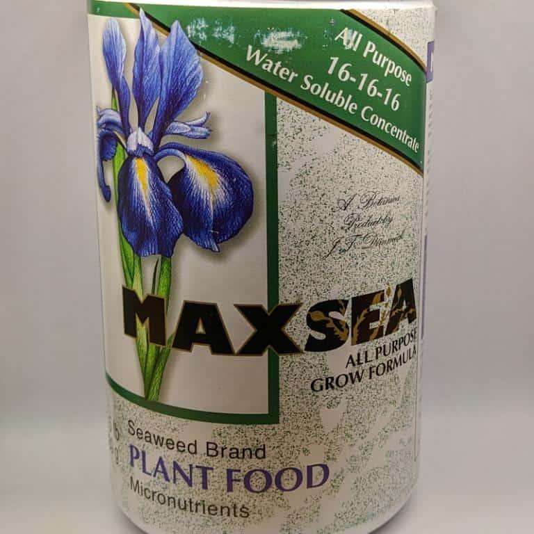 Maxsea 16-16-16